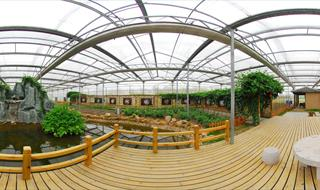 360panoramic Urban Vegetable Garden