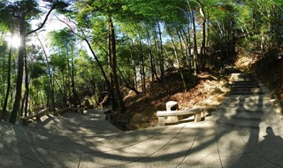 Mount Huangshan Mountain scenic 360 view
