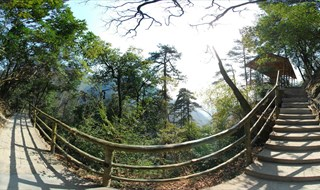 360 virtual travel of Tianmu Mountain