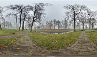 Jelgava palace park on a foggy day