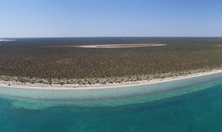 Little Lagoon - Shark Bay Western Australia