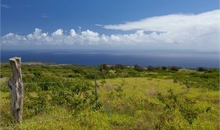 500 Beautiful acres in Hawaii