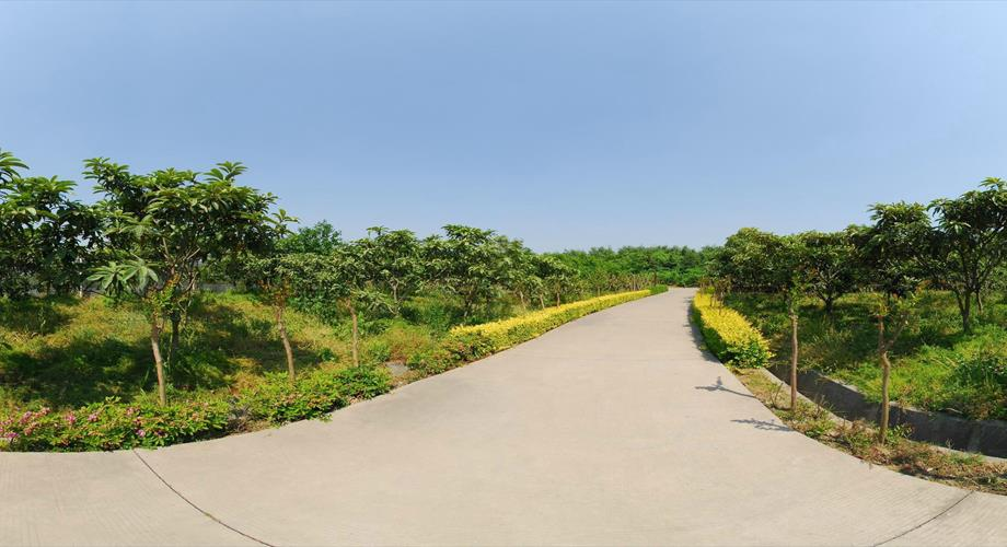 Virtual Landscaping Upload Picture : Datang ecological garden virtual view natural landscape china